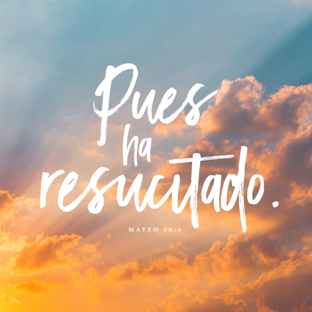 Mateo 28:6 Imagen de Versículo