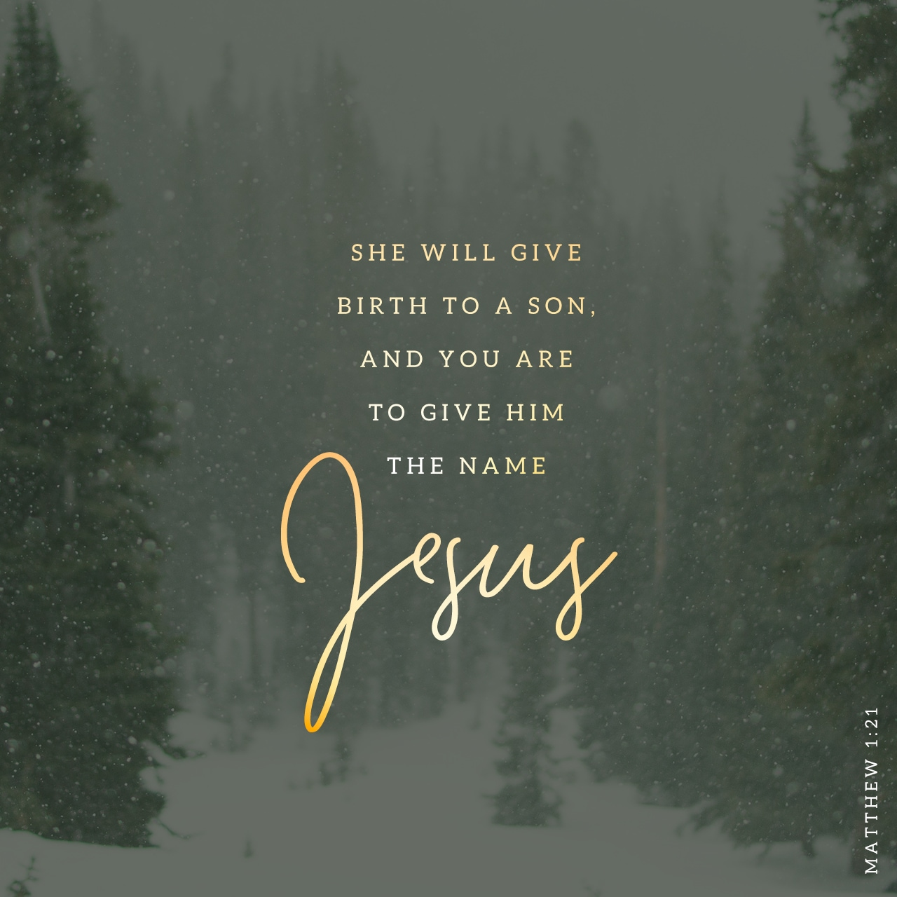 ⭐ Merry Christmas from YouVersion. - YouVersion