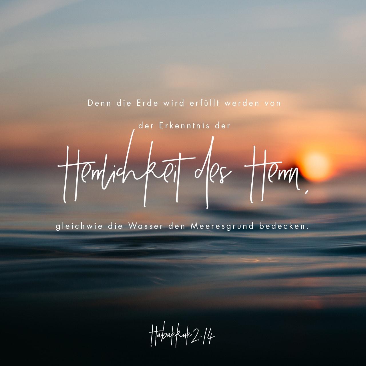 Versbild für Habakuk 2,14
